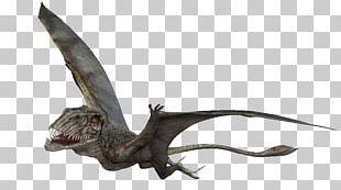 Dimorphodon Pteranodon Edmontosaurus Flying Reptiles Quetzalcoatlus PNG
