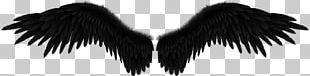 Fallen Angel Wing Black PNG