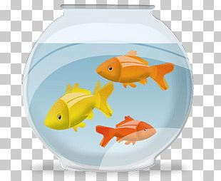 Fish Bowl With Fish PNG