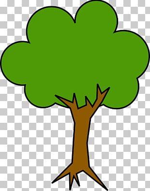 Shade Tree Cartoon PNG