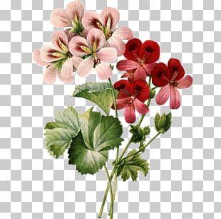 Floral Design Cut Flowers Vintage Clothing PNG