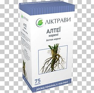 Herbaceous Plant Pharmacy Pharmaceutical Drug Kiev PNG