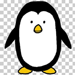 King Penguin Drawing PNG