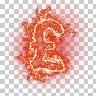 Euro Money Icon PNG
