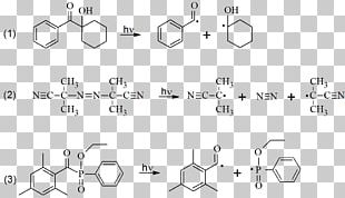Fluorescence Hydrogen Peroxide Photoinitiator Two-photon Excitation Microscopy Reactive Oxygen Species PNG