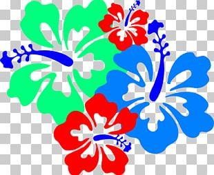 Rosemallows Flower Hawaiian Hibiscus PNG