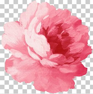 Paper Sticker Pink Flowers Rose PNG