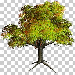 Tree Pixel PNG
