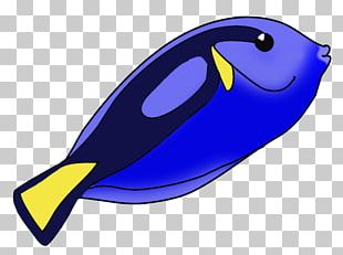 Blue Tang Ray-finned Fishes Black Telescope Open PNG