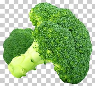 Broccoli Vegetable PNG
