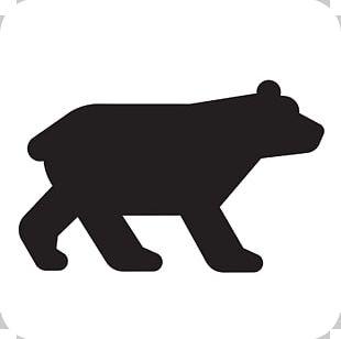 American Black Bear Brown Bear Giant Panda PNG