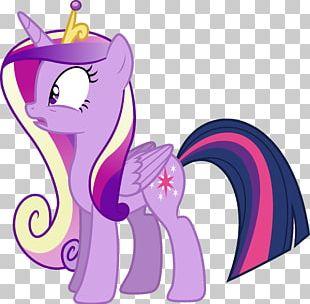 Pony Twilight Sparkle Princess Cadance Pinkie Pie Rainbow Dash PNG