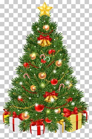 Christmas Tree Christmas Day Christmas Ornament PNG