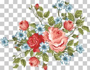 Cut Flowers Floral Design Floristry Garden Roses PNG