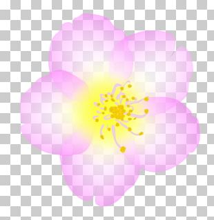 National Cherry Blossom Festival Logo Paper PNG