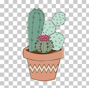 Cactaceae Tumblr Plant Drawing PNG