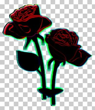 Black Rose PNG