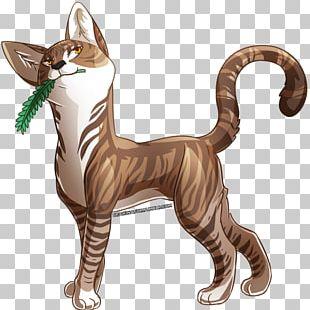 Cat Leafpool Digital Art ThunderClan PNG