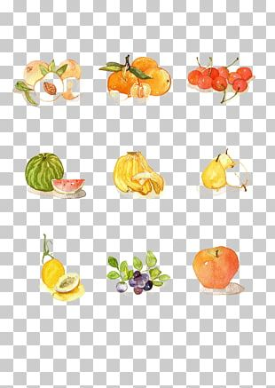 Peel Vegetable Fruit PNG