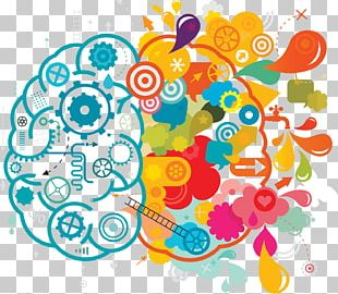 Your Creative Brain Creativity Lateralization Of Brain Function PNG