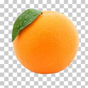 Orange Juice Fruit Peel PNG