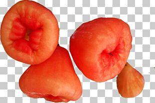 Java Apple Fruit PNG