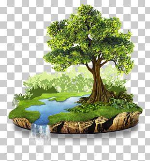 Natural Resource Conservation Nature Natural Environment PNG