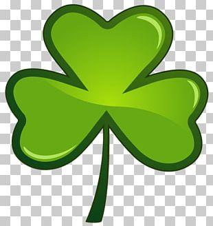 Saint Patrick's Day Shamrock Desktop PNG