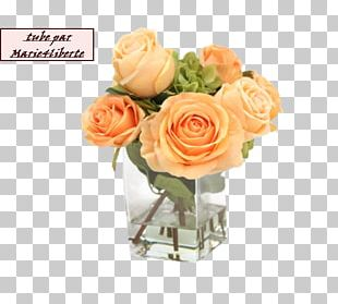 Garden Roses Floral Design Cut Flowers Artificial Flower PNG