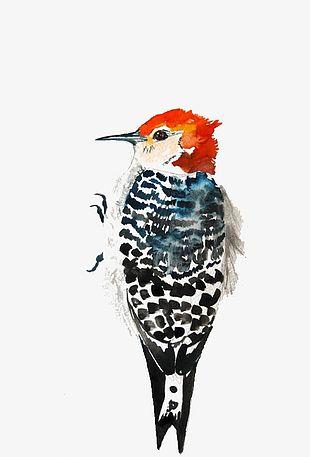 Watercolor Bird PNG