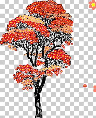 Japan Cherry Blossom Tree PNG