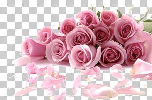 Rose Flower Bouquet Desktop Pink PNG