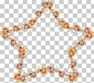 Flower Floral Design Frames Petal PNG