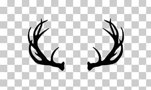 Reindeer White-tailed Deer Moose Elk PNG