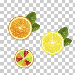 Auglis Lemon Pomelo PNG