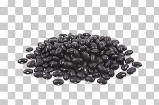 Black Turtle Bean Food Soybean PNG