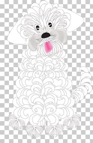 Whiskers White Visual Arts Illustration PNG