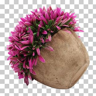 Flowerpot Border Plants Tree PNG