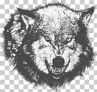 Dog Drawing Black Wolf Sketch PNG