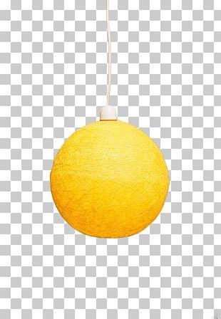 Citrus Ceiling Light Fixture PNG