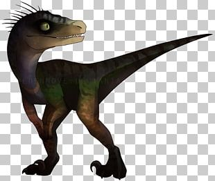 Velociraptor Jurassic Park: Operation Genesis Tyrannosaurus Dinosaur PNG