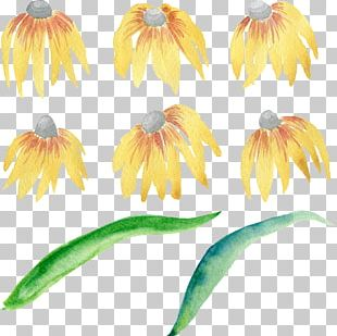 Flower Watercolor Painting Portable Network Graphics PNG