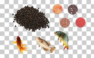 Commercial Fish Feed Aquarium Fish Feed Feed Manufacturing Pelletizing PNG
