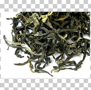 Darjeeling White Tea Oolong Green Tea Dianhong PNG