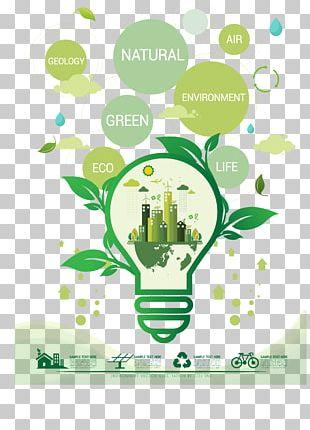 Light Bulb Environmental Consciousness PNG
