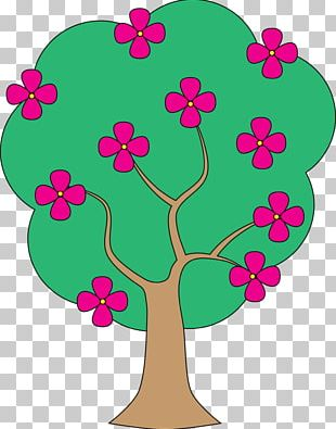 Open Tree Blossom Flower PNG