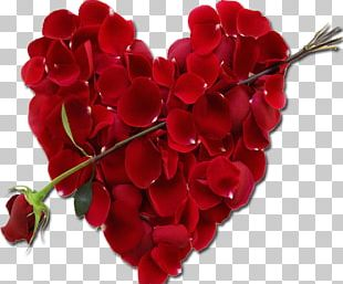 Valentine's Day Love February 14 Romance Gift PNG