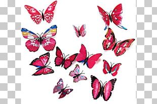 Sticker Butterfly Wall Decal Room PNG