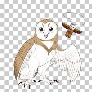 Owl Fauna Beak Feather PNG