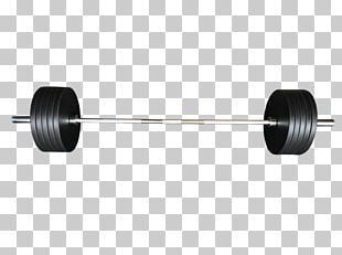 Barbell Weight Training Dumbbell Weight Plate Bench PNG